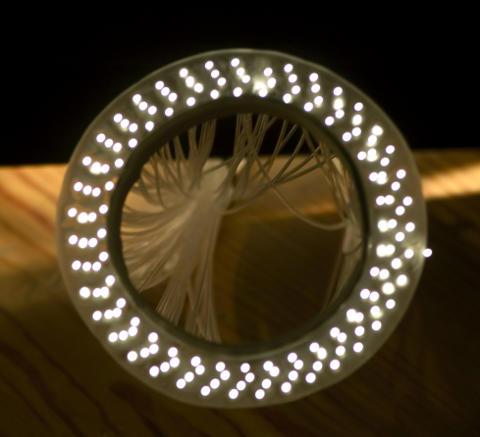 Light through Fiber Optics Whip